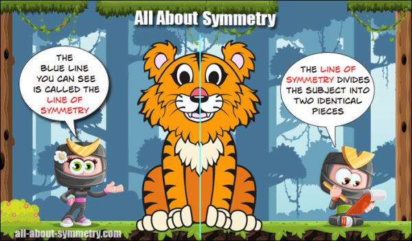 What is Line Symmetry?
